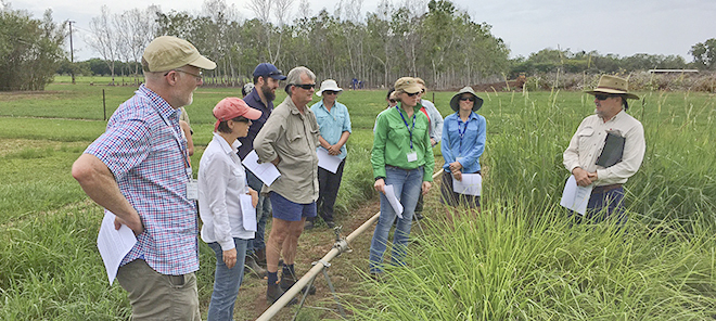 Arthur Cameron talks about good soil and tropical grasses during the TNRM tour to Coastal Plains Research Farm