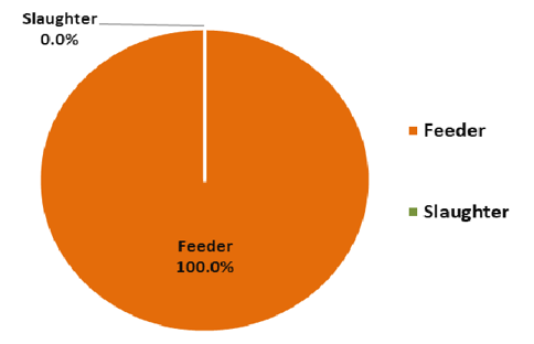 Live cattle and buffalo exports by feeder and slaughter type
