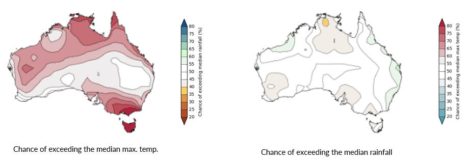 Figure 9. Chance of rainfall and maximum temperature maps for October to December 2017. Sourced from the Australian Bureau of Meteorology (http://www.bom.gov.au/climate/outlooks/ )