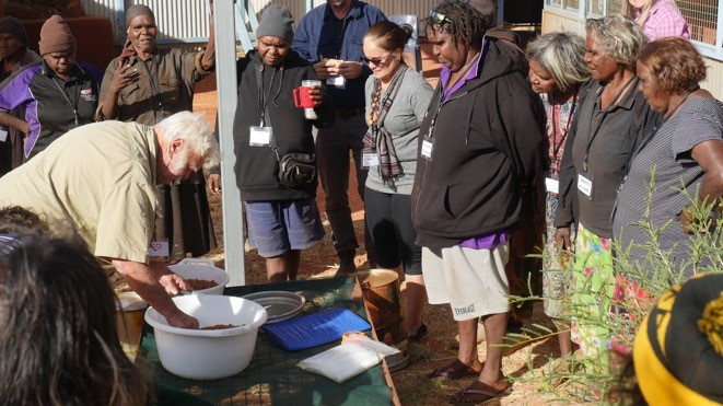 Rod Horner demonstrates washing and drying methods required to maintain Akatyerr fruit quality and meet industry standards. Photo by Fiona Walsh/CLC
