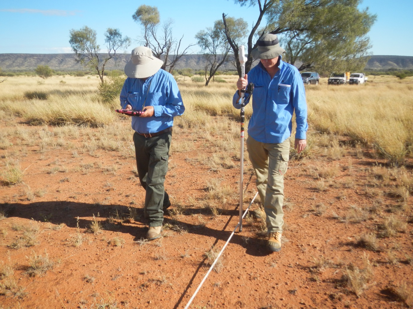 A laser pointer mounted on a pole is used to measure groundcover components at 300 points within one hectare at each measured site. Data are recorded using a tablet