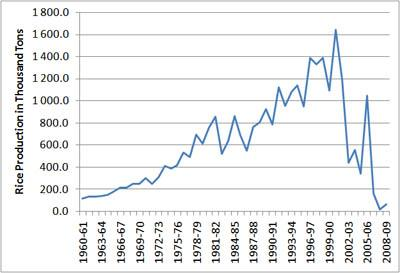 Australian rice yields 1960 to 2009