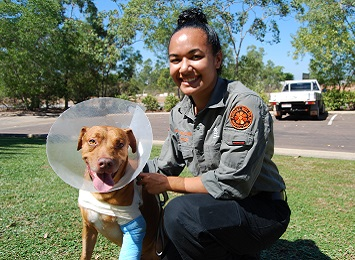 An animal welfare officer with an injured dog