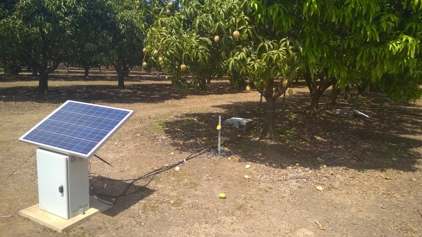A semi-automatic soil gas sampling system set up at a Darwin mango orchard. The solar panel and sampler unit are in the foreground, and the sampling chambers are under the mango trees