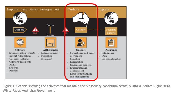 Figure 1: Graphic showing the activities that maintain the biosecurity continuum across Australia. Source: Agricultural White Paper, Australian Government