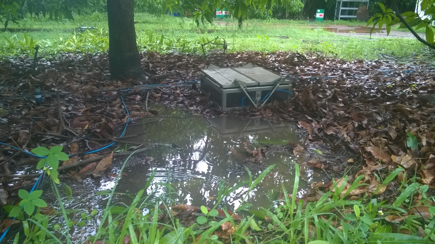 A fully automated soil gas sampling chamber in a mango orchard after heavy rain. Darwin weather conditions can make gas sampling a challenge!
