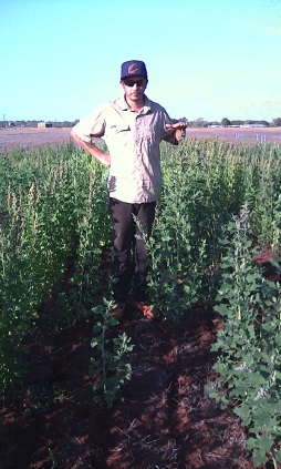 Karl inspecting the Quinoa crop prior to harvest