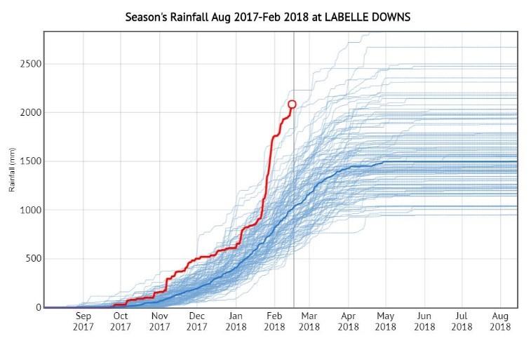 Graph 1. Season's  rainfall at Labelle Downs