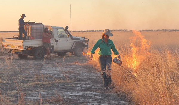 Burning the experimental plots at Newcastle Waters Station