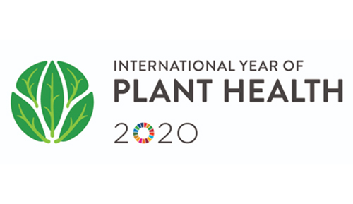Celebrate the International Year of Plant Health
