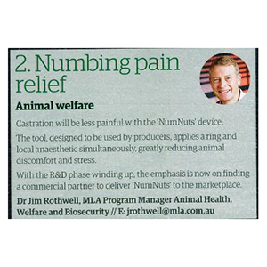 2. Numbing pain relief