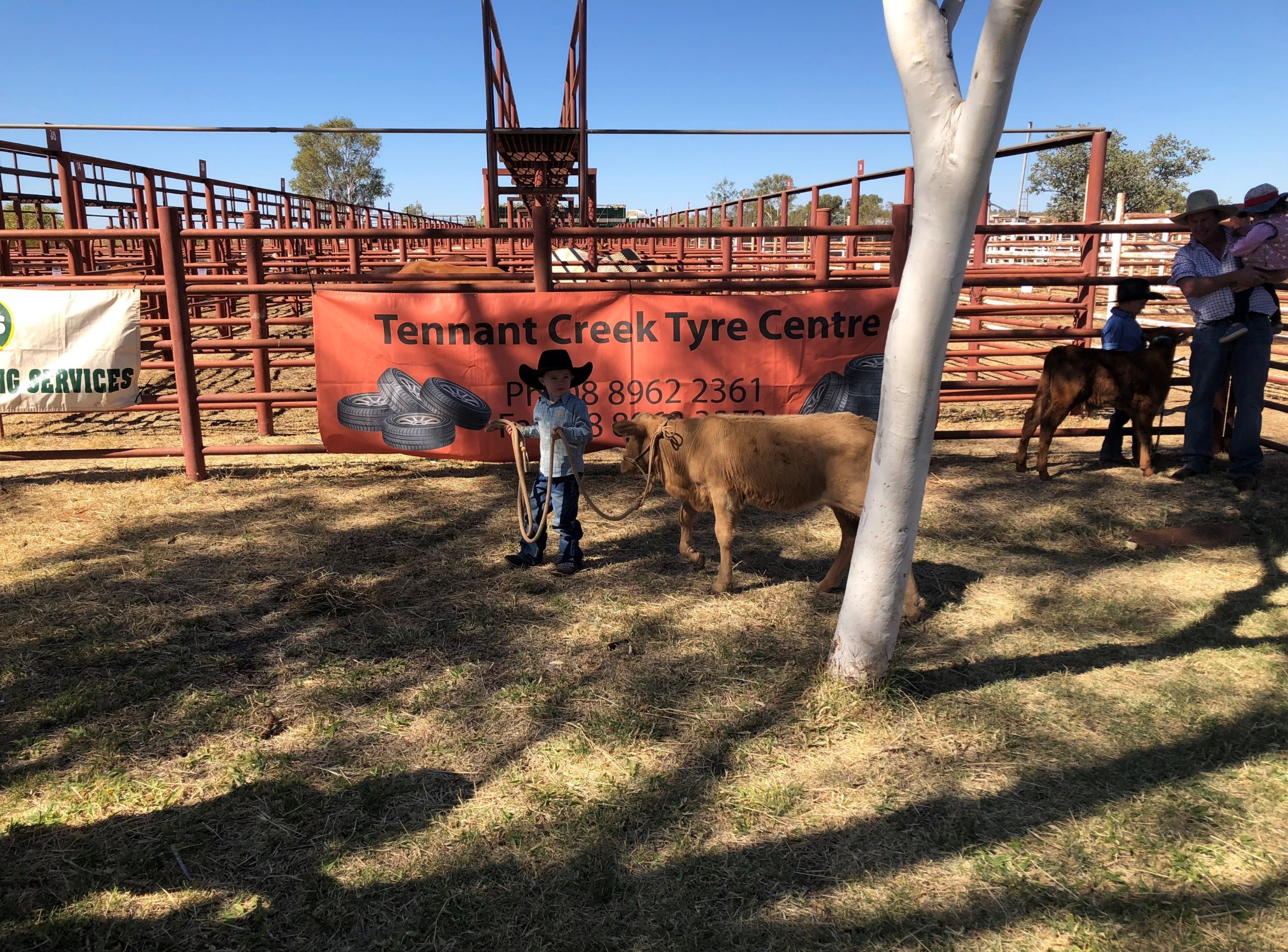 Figure 3 Waylon Ford (Tennant Creek Station) and Annie were Best Presented and overall winners of the led calf class