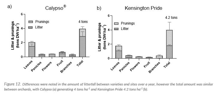 Differences were noted in the amount of litterfall between varieties and sites over a year, however the total amount was similar between orchards, with Calypso (a) generating 4 tons ha-1 and Kensington Pride 4.2 tons ha-1 (b).