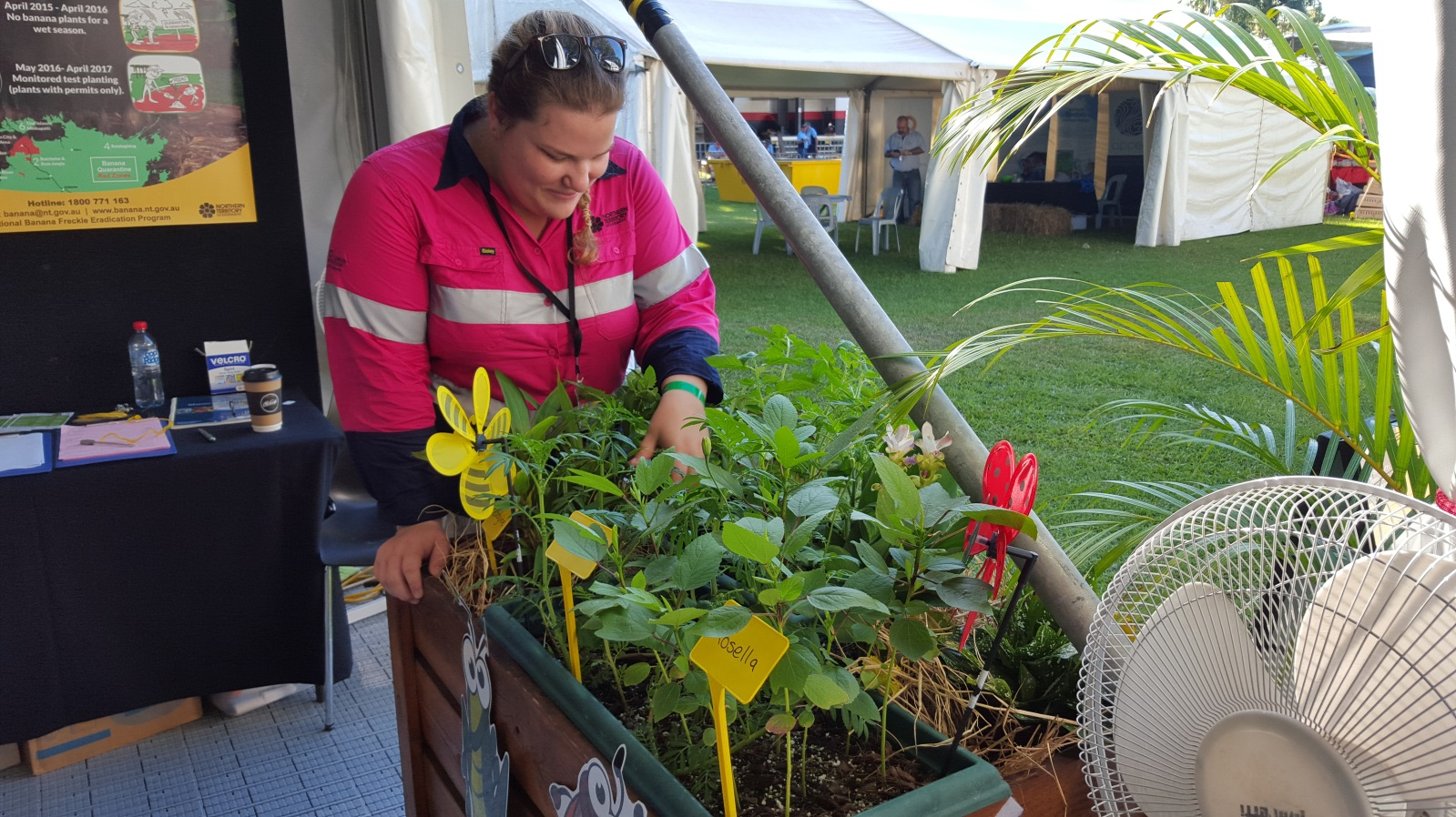 Amy Dobell from the Plant Industries Development group tends to the garden