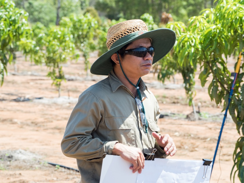 Senior Agronomist Tony Asis discusses how we will go about learning more on nitrogen nutrition in mango trees