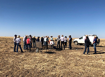 Industry researchers converge on the Barkly Tablelands