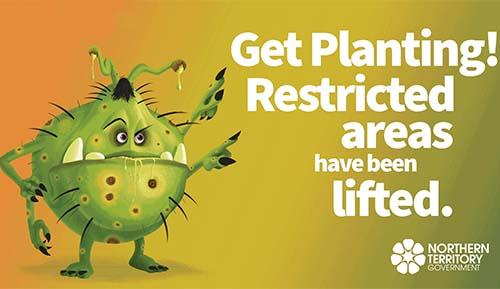 Citrus Canker - Get planting