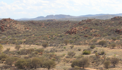 Sustainable vegetation management for rangelands