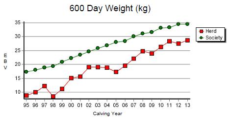 Graph: 600 Day Weight