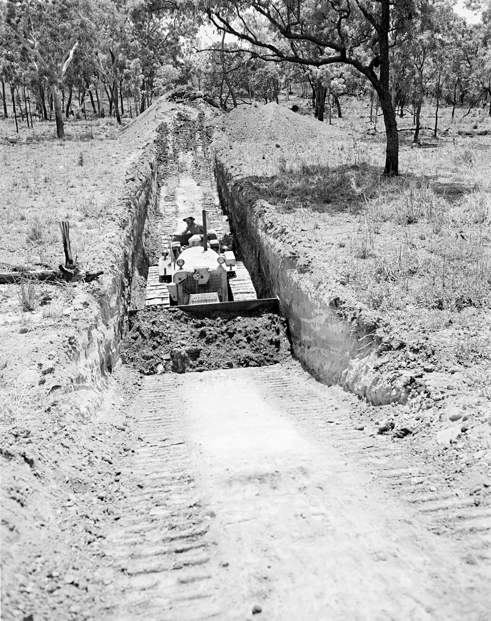 Bulldozer costeaning at Rum Jungle (1959). National Archives of Australia: A1200, L30438