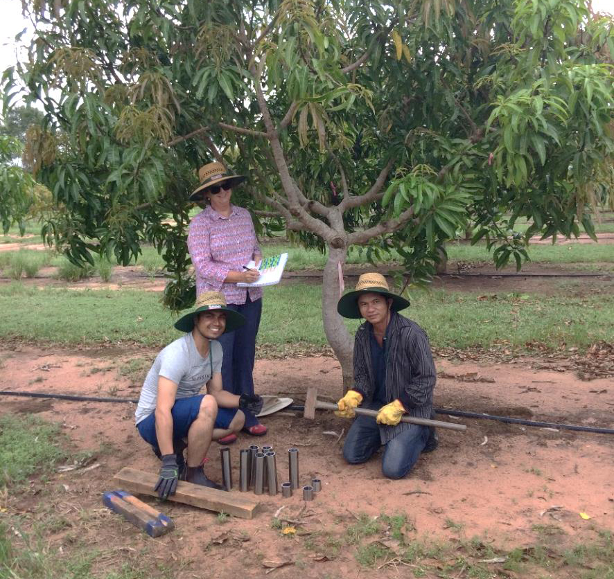 Project team begins soil sampling (L to R), Queensland University of Technology PhD student Hemant Pandeya who will work on the project with DPIR staff Project Scientist Dr Joanne Tilbrook (standing) and Senior Nutrition Scientist Dr Tony Asis